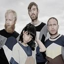 Groupe Little Dragon