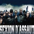 Groupe Sexion D'Assaut