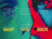 Musique 5 Seconds Of Summer Want You Back