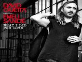 David Guetta What I Did For Love feat Emeli Sandé