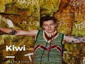 Harry Styles Kiwi